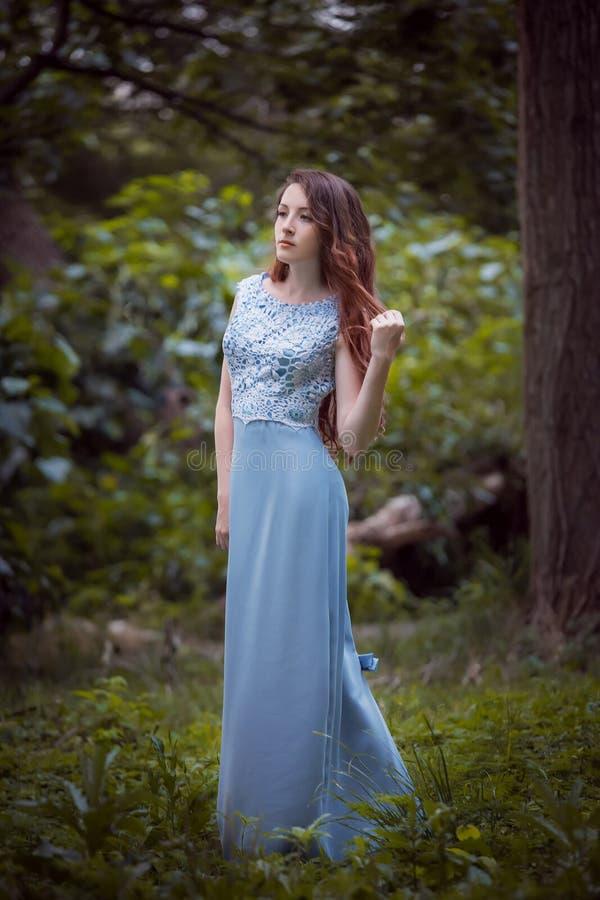 fille de robe transparente image libre de droits