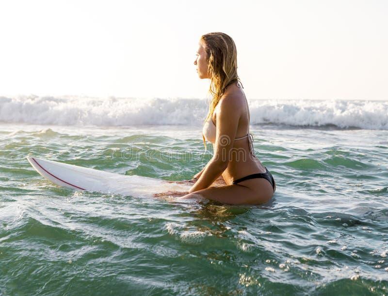 Fille de surfer images libres de droits