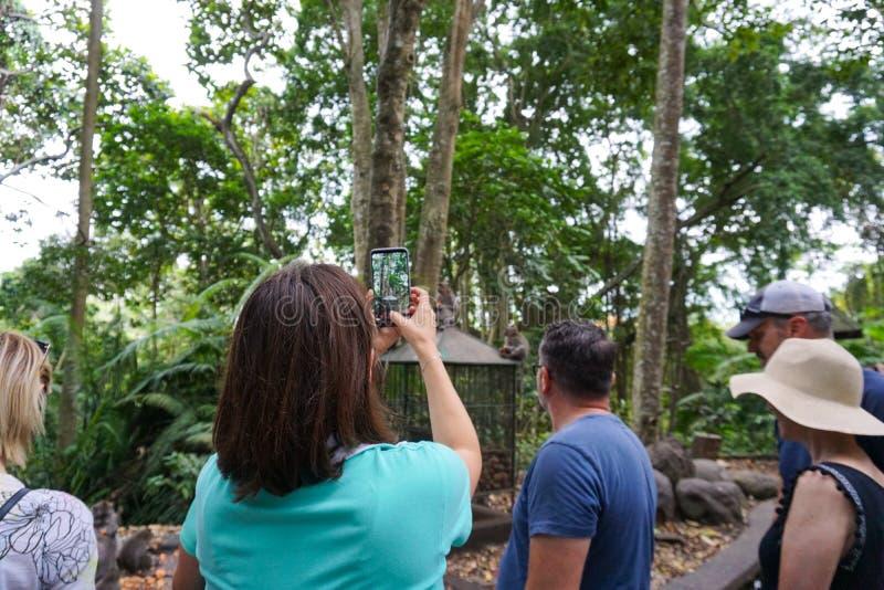Fille de touristes prenant les photos des singes dans la forêt de singe d'Ubud, île de Bali, Indonésie image stock