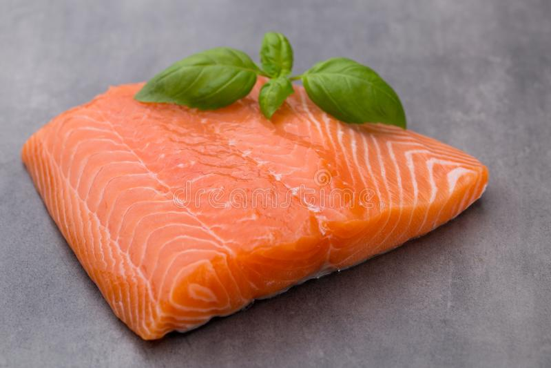 Fille di color salmone fresco con la spezia sui precedenti grigi immagini stock libere da diritti