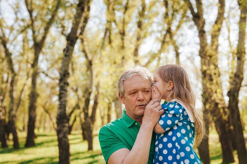 Fille disant le secret au grand-père image stock