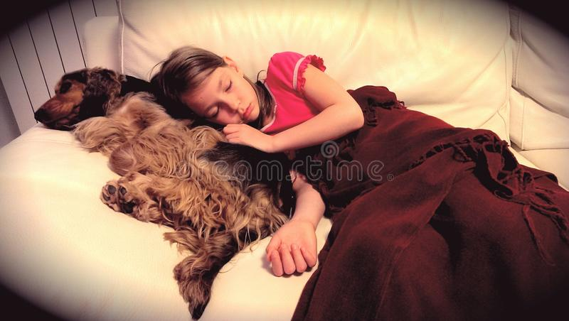 Fille dormant avec son chien photo stock