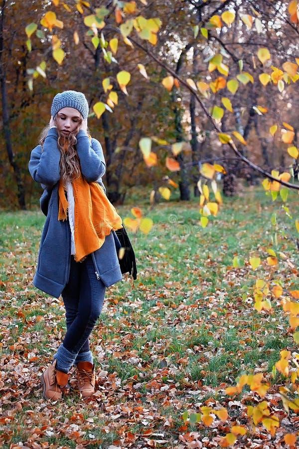 Download Fille en parc d'automne image stock. Image du froid, couvert - 45369295