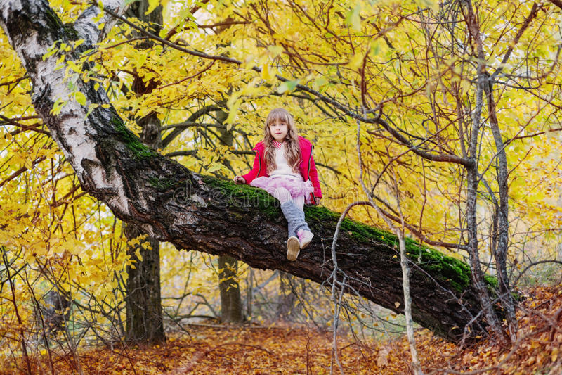 Fille en parc d'automne photographie stock