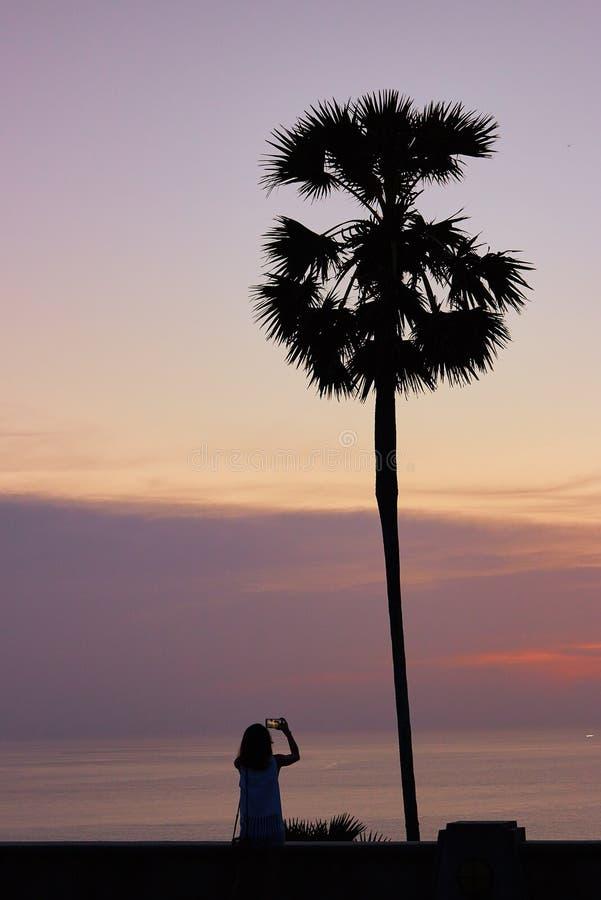 Fille et arbre dans le temps de coucher du soleil photographie stock libre de droits