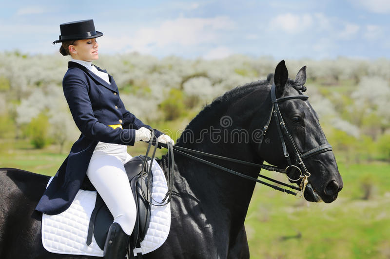 Fille et cheval de dressage photographie stock