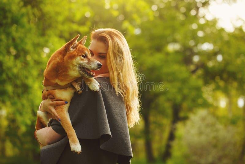 Fille et chien Shiba Inu caressant image stock