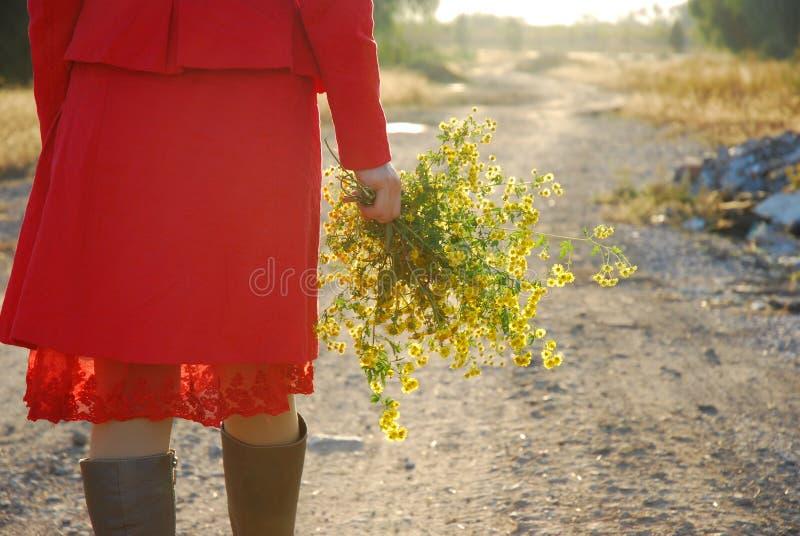 Fille et fleurs image libre de droits