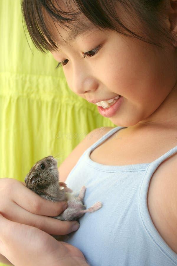 Fille et hamster photo stock