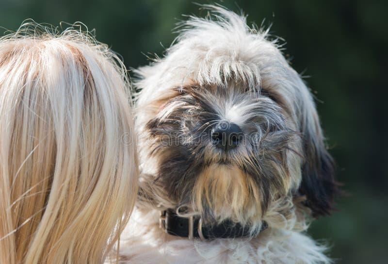 Fille et son chien photos libres de droits