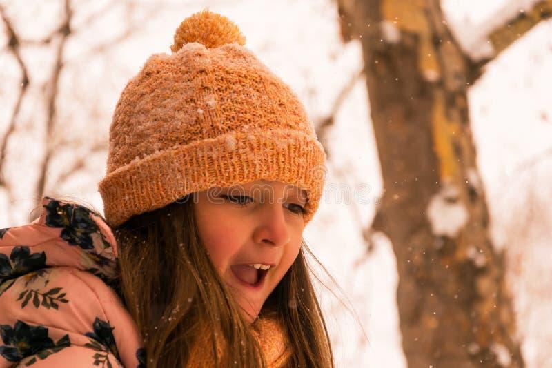 Fille heureuse dans un jour d'hiver froid photographie stock
