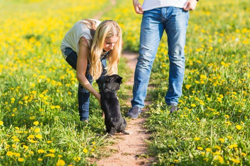 Fille jouant avec le chien sur l'herbe photo libre de droits