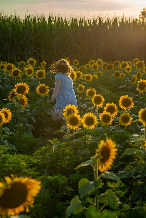 Fille joyeuse de beauté jeune avec le tournesol appréciant la nature et riant sur le gisement de tournesol d'été Sunflare, rayons images stock