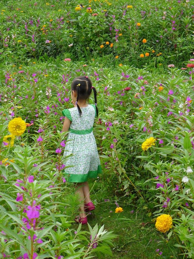 Fille marchant dans le jardin photographie stock
