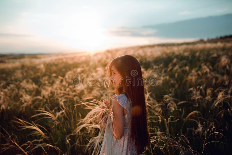 Fille marchant sur un champ de blé tenant la transitoire de blé au beau coucher du soleil Liberté et concept d'air frais photographie stock libre de droits