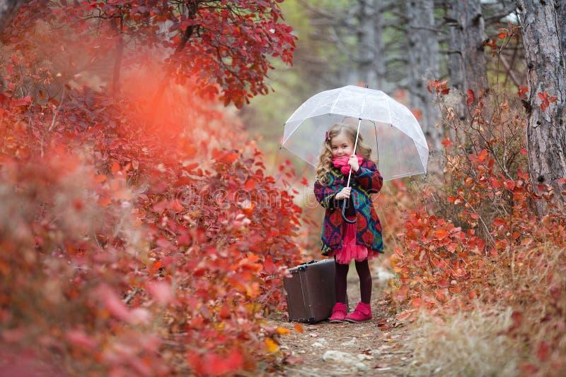 Fille mignonne avec une vieille valise et un parapluie dans sa main sur un sentier piéton dans la forêt d'automne image libre de droits