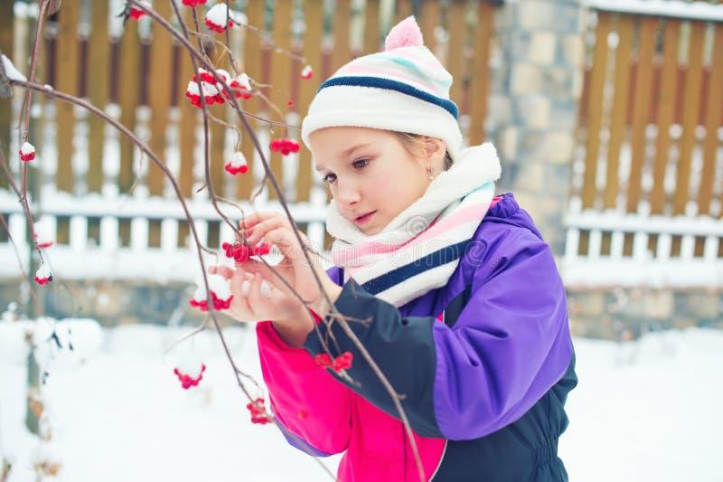 Fille mignonne d'enfant en bas âge dans le village d'hiver regardant les baies rouges surgelées image libre de droits