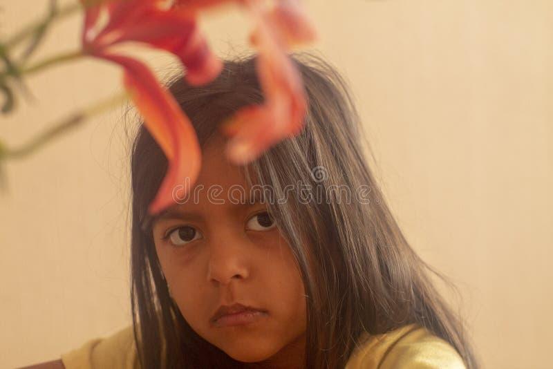 Fille mignonne de brune avec le regard contrarié photos libres de droits