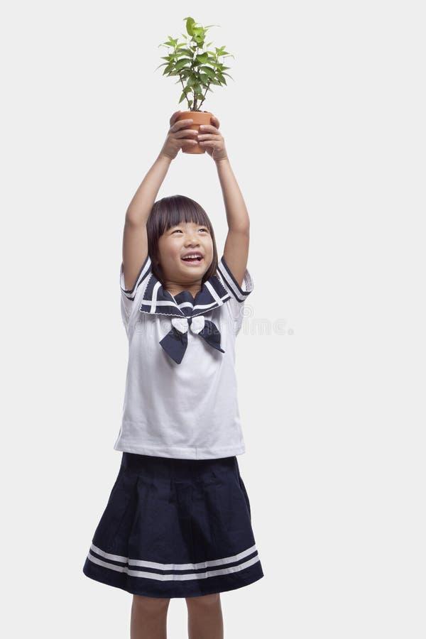 Fille mignonne de sourire dans l'uniforme scolaire tenant l'usine mise en pot au-dessus de sa tête, tir de studio photographie stock