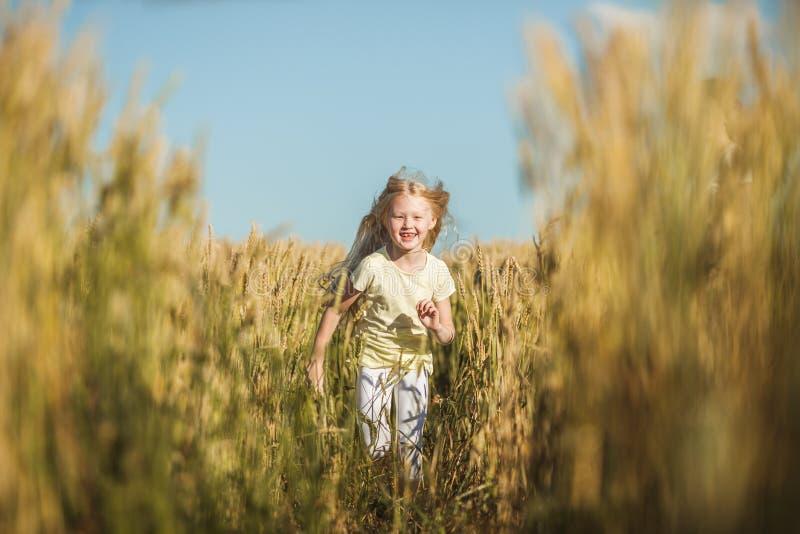 Fille mignonne heureuse jouant dans le domaine de blé image stock
