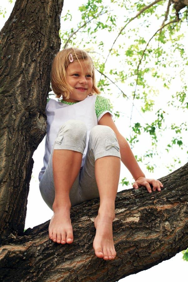 Fille mignonne montée sur l'arbre images stock