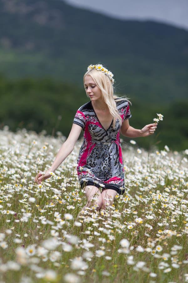 Fille mince dans la robe légère marchant dans le domaine de camomille photo libre de droits