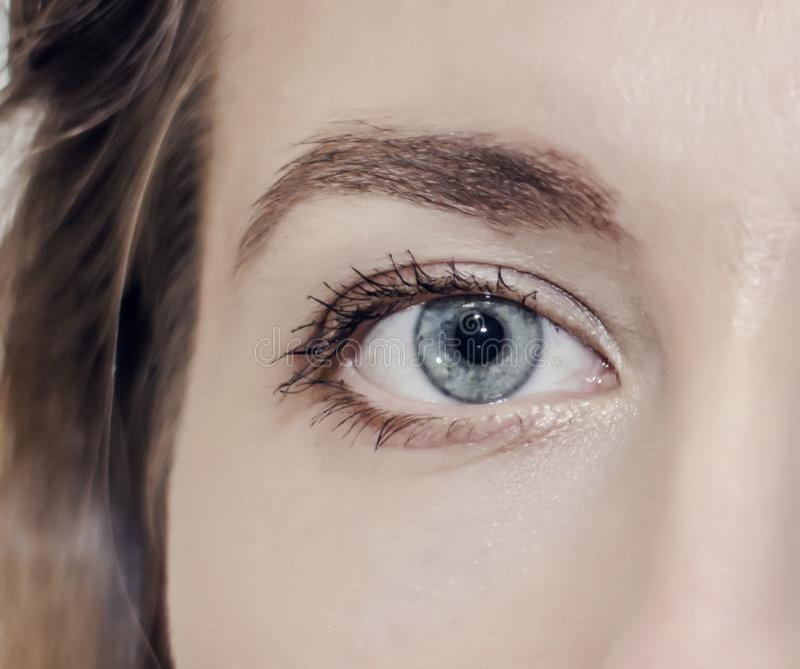 Fille ouverte d'oeil de plan rapproché gris de couleur Optométriste, optique, vue, vue, belle, santé d'oeil photographie stock