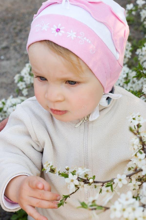 Fille parmi la fleur de cerisier photos stock