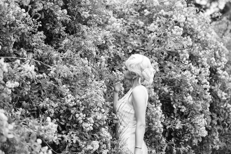 Fille près du mur de fleur Fille blonde près de rosier images libres de droits