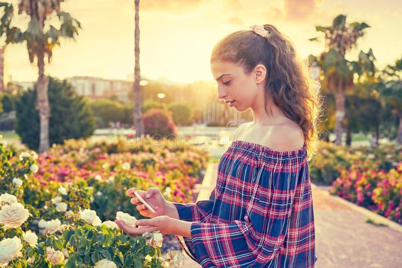 Fille prenant la photo de smartphone à la fleur rose photographie stock