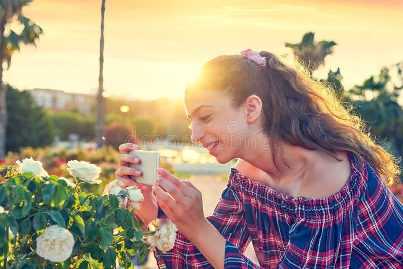 Fille prenant la photo de smartphone à la fleur rose photos stock