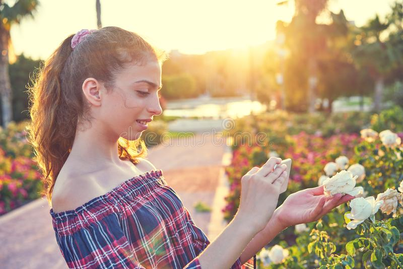 Fille prenant la photo de smartphone à la fleur rose photographie stock libre de droits