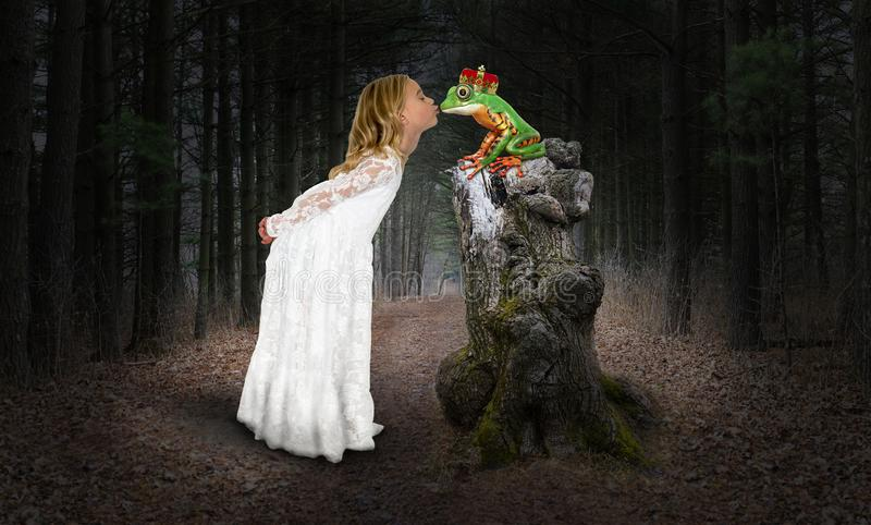 Fille, princesse, baiser, embrassant la grenouille, imagination photographie stock libre de droits