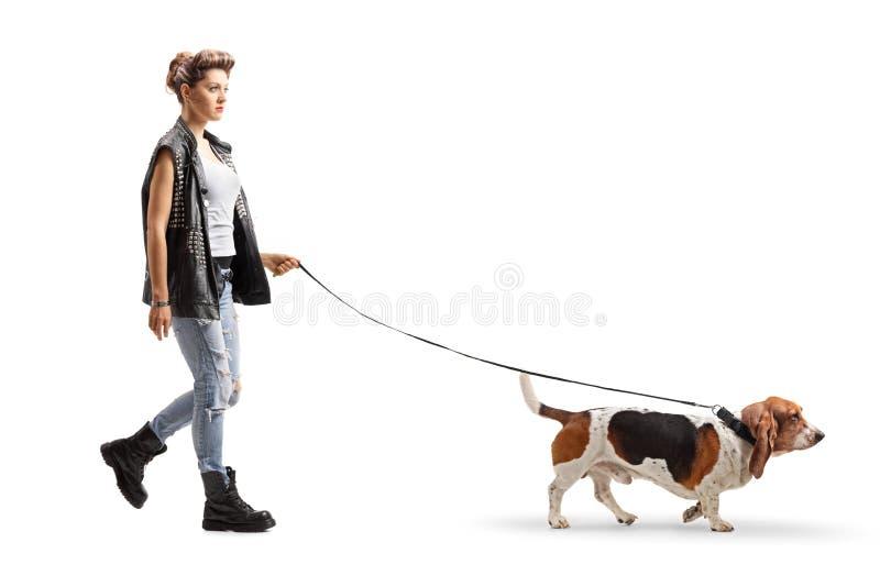 Fille punk marchant avec un chien de chasse de basset sur une laisse image libre de droits