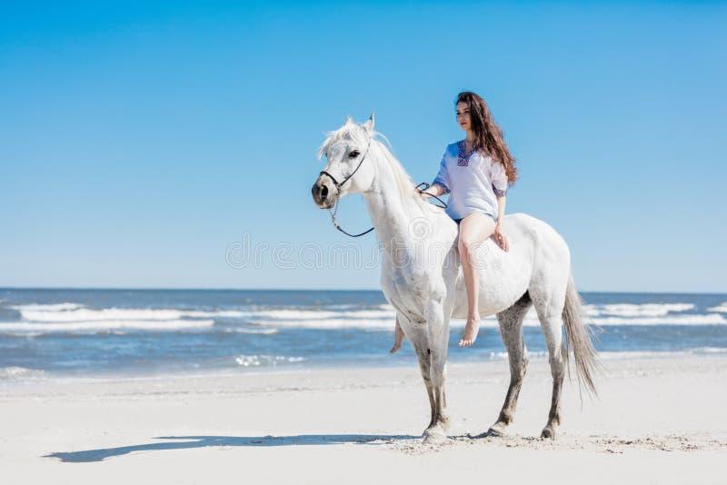 Fille s'asseyant sur un cheval blanc par la mer images libres de droits