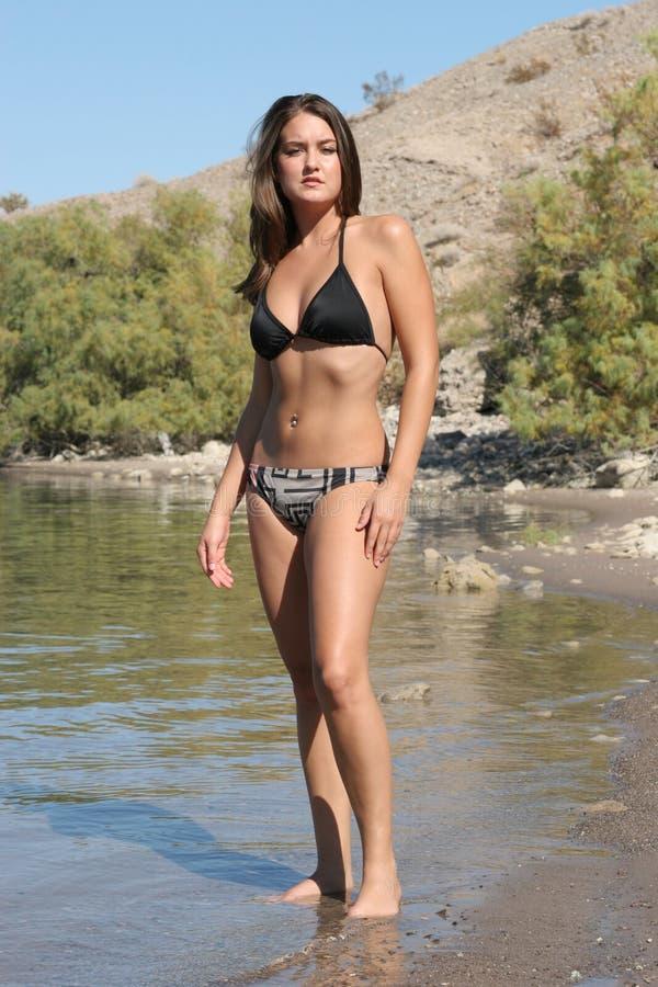 Fille sexy dans le bikini photos stock