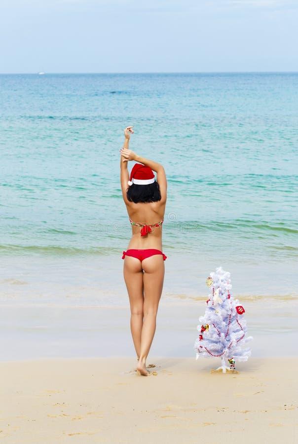 Fille sexy Santa dans le bikini sur un sapin de plage photographie stock libre de droits
