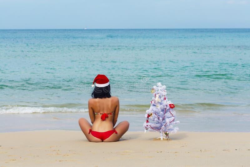 Fille sexy Santa dans le bikini sur un sapin de plage photo libre de droits