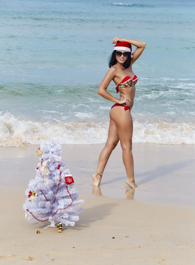 Fille sexy Santa dans le bikini sur un sapin de plage images libres de droits