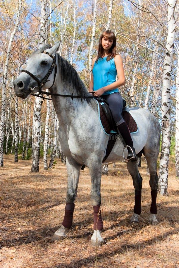 Fille sur un cheval images stock