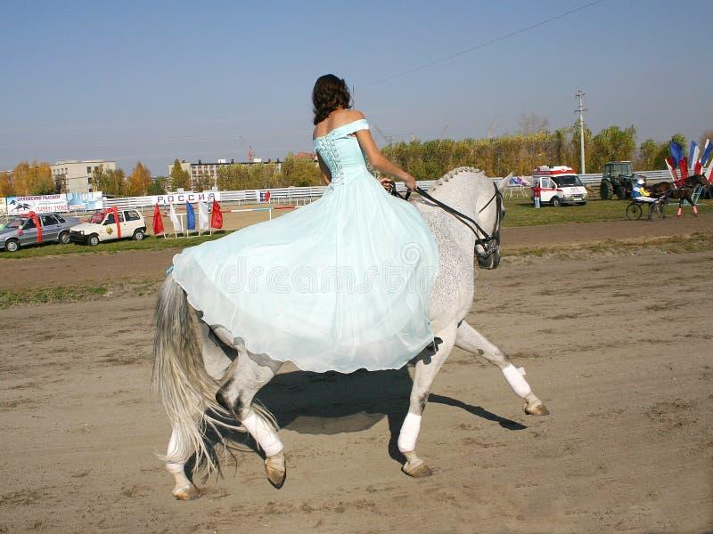 Fille sur un cheval photographie stock libre de droits