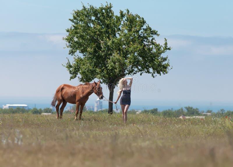 Fille tenant des rênes de cheval photographie stock