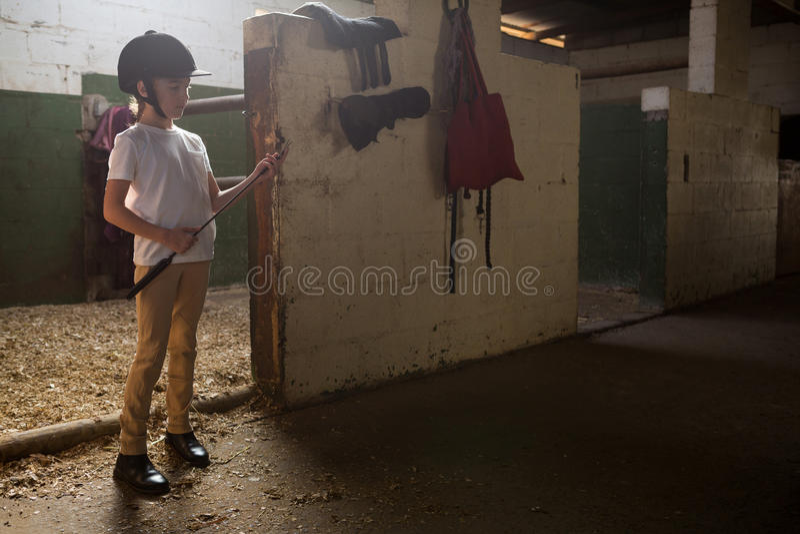 Fille tenant le bâton de culture dans l'écurie photo libre de droits