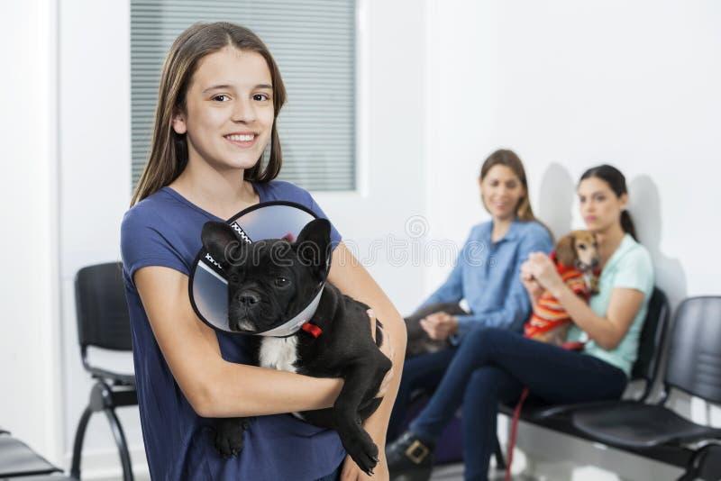 Fille tenant le bouledogue français avec le cône dans la clinique image libre de droits