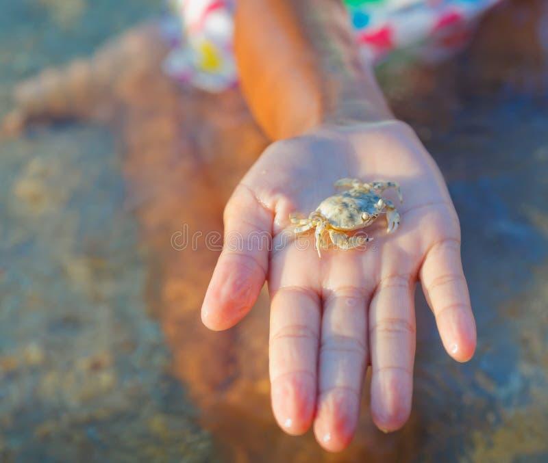 Fille tenant le crabe images libres de droits