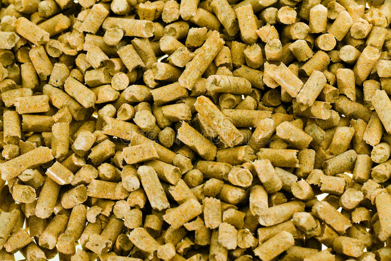 Filler in a toilet royalty free stock photo
