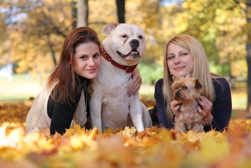 Filles avec des chiens photos stock