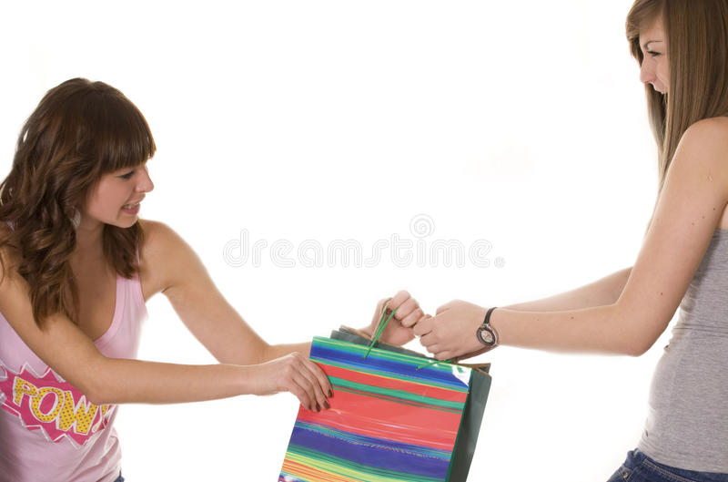 Filles combattant au-dessus d'un sac à provisions images stock