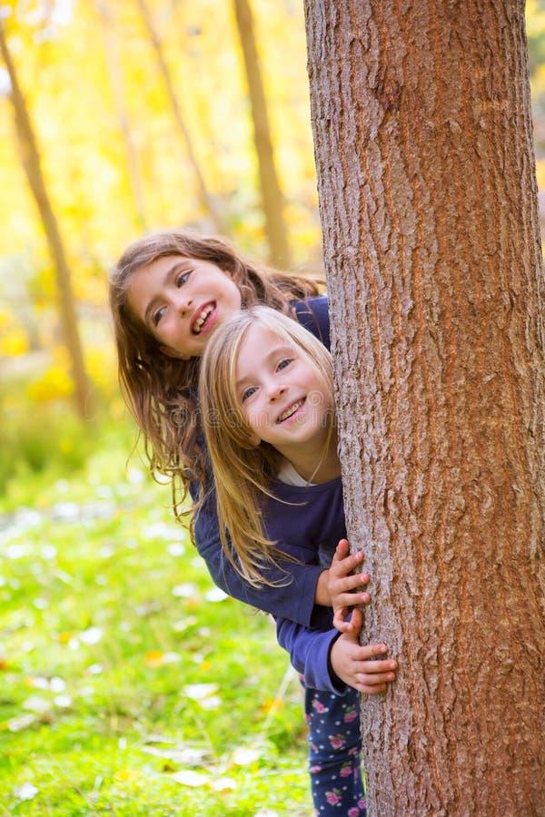 Filles d'enfant de soeur d'automne jouant dans le joncteur réseau de forêt extérieur photos stock