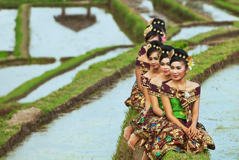 Filles de Balinese dans des terrasses de riz photo libre de droits